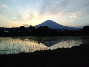 昭和11年生まれの方 お早う御座いますーー今日は晴れています午後の歩きが楽しみですーー今朝の予報では鹿児島は雨でしたねーー