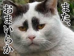 外れ馬券は経費にならない 兵庫県でもすでにこの支給は行われていた    平成19年と平成21年在日無年金訴訟では、日本人か否か