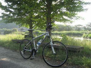 ポタリング専用 早朝サイクリング いい天気です。水面がキラキラしてます。  今朝(6/14)の走行  距離 15.1