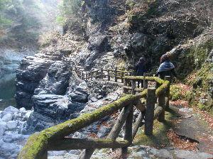 ***小さなしあわせ***   「山歩き」ですか。 良いですね。♪   私は、昨年の秋だったけど、「四国の渓谷」を歩きました。ヽ