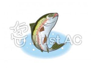 混浴温泉同好会 確かに、秘境&秘湯とか?高級宿もそうなのか‥  でも、川魚も養殖盛んですよ。ニジマス&ヤマメ&イワナ