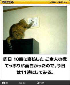 3197 - (株)すかいらーくホールディングス こんばんにゃ~🙌