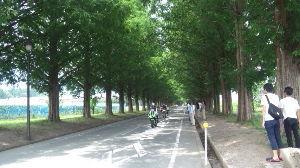 何となくツーな気分(一宮・岐阜辺り) hananaさん ご無沙汰してます。 夏でも、ボチボチ走ってますよ~(*^-^*)  暑さとの戦いよ