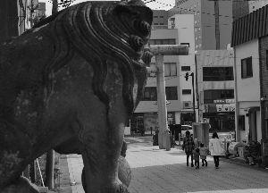 写真仲間を作りましょう おはようございます。  ま・・またやっちまいました。  昨日夕方、東京中野方面の中古パトロール、ネッ