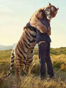 3047 - (株)TRUCK-ONE トラ食わん 抱きしめてあげて