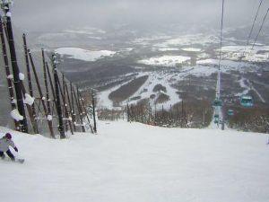 秋田弁でしゃべらねが? お久しぶりでガス! スキーシーズンも終わり、これから 仕事、バリバリですえ??   番頭