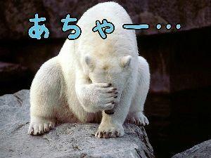 4902 - コニカミノルタ(株)   4連チャンの勢いにブレーキがかかったかぁ~~~!!
