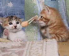 2413 - エムスリー(株) おいしいから、イモスリーお食べ ♪