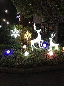 聖蹟桜ヶ丘のトピックをもう一度 しかし聖蹟桜ヶ丘のクリスマスイルミネーションはささやかになってしまいました。 昔は街路樹にもイルミネ