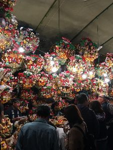 聖蹟桜ヶ丘のトピックをもう一度 今日は府中の大鷲神社の酉の市に行って来ました。 大鷲神社は大国魂神社のところにあります。 酉の市は大