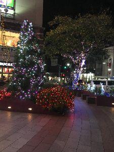 聖蹟桜ヶ丘のトピックをもう一度 オーパの前にクリスマスイルミネーションがありました。 ツリーが立っていたのは知っていましたが前に見た