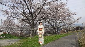 ☆ 四季のある日本 ☆ 中国から我が家菜へ来ていた子供が3つの大学で沢山の勉強を修了して 4月1日に自国へ帰りました。 最後