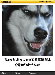 ステルスぱぱ~ あてにするからはずれるんだよ → よくわかりません^^;