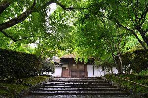 初めまして( ´ ▽ ` )ノ こんばんわ  京都散策、、、歩いてますか 今の時期 気候も良く 歩きやすいですね   蓮華寺と実相院