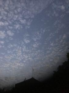 仮想通貨総合 長く生きててあんま見ない雲を都内でみた。   地震雲じゃなければいいな。
