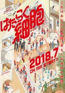 新作アニメ情報室 「はたらく細胞」  清水茜先生の同作がアニメ化、7月より放送予定。 https://headline
