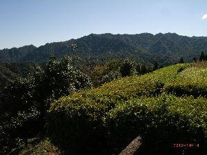 *** ディジカメ散歩 *** 「花切山」 です。  皆さん、  こんばんは。  ーー 「花切山」 です。