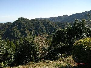 *** ディジカメ散歩 *** 「奥に赤松峠」が見えます。  皆さん、  こんばんは。  ーー 「奥に赤松峠」が見えます。