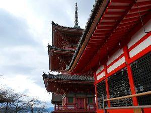 皆様散歩してますか。 京都を散歩