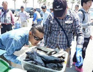 サロン浜名湖ღ❤ღ´ェ`*)・・・・・。 湖西市の新居町観光協会は17日、磯釣り大会(静岡新聞社・静岡放送後援)を新居弁天海釣り公園で開いた。