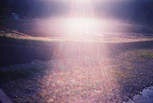 7867 - (株)タカラトミー 妖精ちゃん世麗美はコレ。 (私は私として)「世界の美しさに開眼する」(そして自らを知る) こういう「