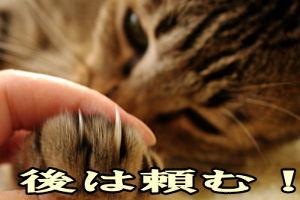 6628 - オンキヨー(株) www