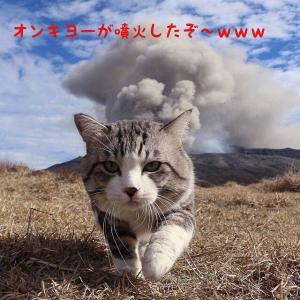 6628 - オンキヨー(株) ♪今日こそ火が付け、火曜日です♪ おはようございます。 中傷、非難は俺のためにあるんだぜ! 今日もラ