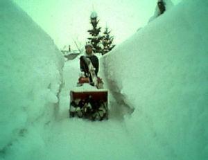 いよいよ、預貯金封鎖の話が出てきました。 >>kanさんの暮らす場所が、あまり雪が積もらないなら考えますが、カミさんは移住を拒否す