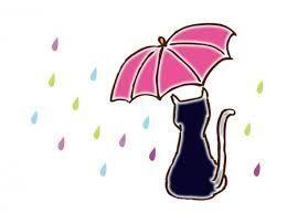 ★。・:*:・゚  お話しのキャッチボール 。・:*:・゚★ おはようさん♪  雨の週明けですね  青空が好きなみぃだけど  この時季だけは花粉が舞うのを  防い