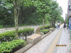 趣味を生かし日々輝いて 昨日、昭和の文豪・太宰治の墓に参拝しました。  桜桃忌にあたり、多くの太宰文学ファンで、墓前は混んで