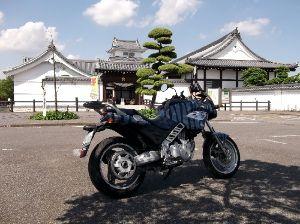 リタイヤー ライダーです 田植えの終わった農道を通って近くのお城に  気晴らしに行って来ました  平日なので自転車のライダーが