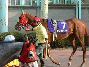 3647 - (株)ジー・スリーホールディングス ふざけた名前の馬が好きです