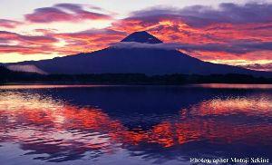 阪神より、ノンビリ、トコトコ走りましょう まいど!  残念です~(>_<;) やっぱし、台風には勝てまへんなぁ~ と言う事で・・・