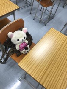 4596 - 窪田製薬ホールディングス(株) クマちゃんボラリズム 🐻 2700円→↑↑↑ ノダハハハハ