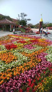 山を歩くのが好きです。 人工の花の楽園! めちゃ綺麗。(・・;)(*^^*)(≧∀≦)(´▽`)ノ