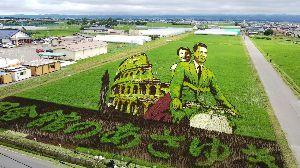 全国の浜田省吾ファンの方 田んぼアート見てきました。