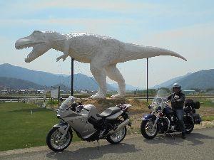 福井県の女子で初心者いますか? 恐竜博物館・・・・第3日曜日が無料なんですか~ 無料になるのは福井県の家庭の日だったかな?年に1回だ