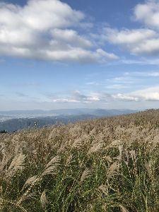 福井県の女子で初心者いますか? おはよございます(^^) 和歌山の朝は福井とくらべて暑い💦 今日はどんなルートを走るのやら? 昨日は