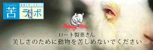 4527 - ロート製薬(株) 酷すぎるな ワロタ ワロタww  化粧品開発のために行なわれる動物実験とは: ・シャンプーの原料をウ