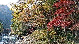 関東 バイク乗りの写真館 ( ´∀` )b こんばんは(^o^)/  シーさん ありがとうございますm(._.)m  今日の秋は、 山と川と紅葉
