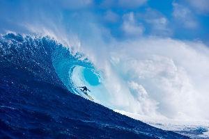 3808 - (株)オウケイウェイヴ 伝説の波が  戻ってくる