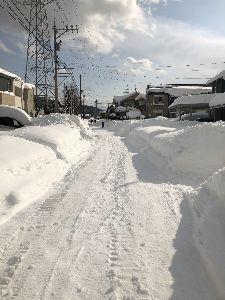 (´・ω・`) 知らんがな (・ω・`)今日も激暑の予報  半年前は 大雪に見舞われてたのにね