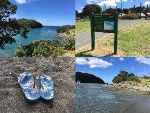 のんびり海外生活【ニュージーランド編】 年明けましたね~ NZもやっと夏らしい雰囲気出て来ました (と言っても気温は30℃前後ですが)