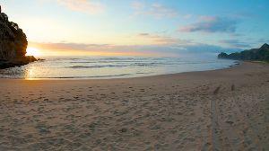 のんびり海外生活【ニュージーランド編】 すっかり年が明けておりました ( ̄▽ ̄;) ニュージーランドは只今夏休み中です 笑    ただ今年、