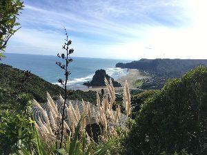 のんびり海外生活【ニュージーランド編】 数日振りに晴れ間の見えるオークランド 日本はGWですがNZは単なる火曜日 笑   ただ、ここ最近グッ