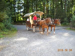 2012年ヨーロッパの田舎の旅 1 はくしょん 様   ベランダ、バルコニー、テラスの違いは難しいですね。わたしにもよく分かりませんが、
