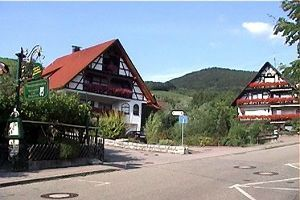 2012年ヨーロッパの田舎の旅 1 ザスバッハヴァルデン続き   前回紹介した花の民家の右側の道がこの村のメイン道路です。この道の右側が