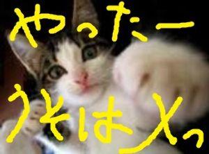 9424 - 日本通信(株) ・