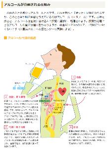9424 - 日本通信(株) 酒は毒じゃないけど 摂取して酵素(一次酵素)で分解されアセトアルデヒドって有害物質になるんだよ  (