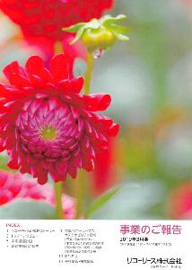 8566 - リコーリース(株) 【 株主優待 到着 】 (100株 優待ランクA:保有継続期間3年以上) 5,000円クオカード。